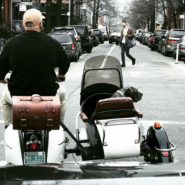 Only in Brooklyn. My dogs would jump out. . . . . . . #sidecar #vespa #dogsofinstagram #goingforaride #dogsincars #brooklyn #sundayafternoon #dogsofig #verygoodboy