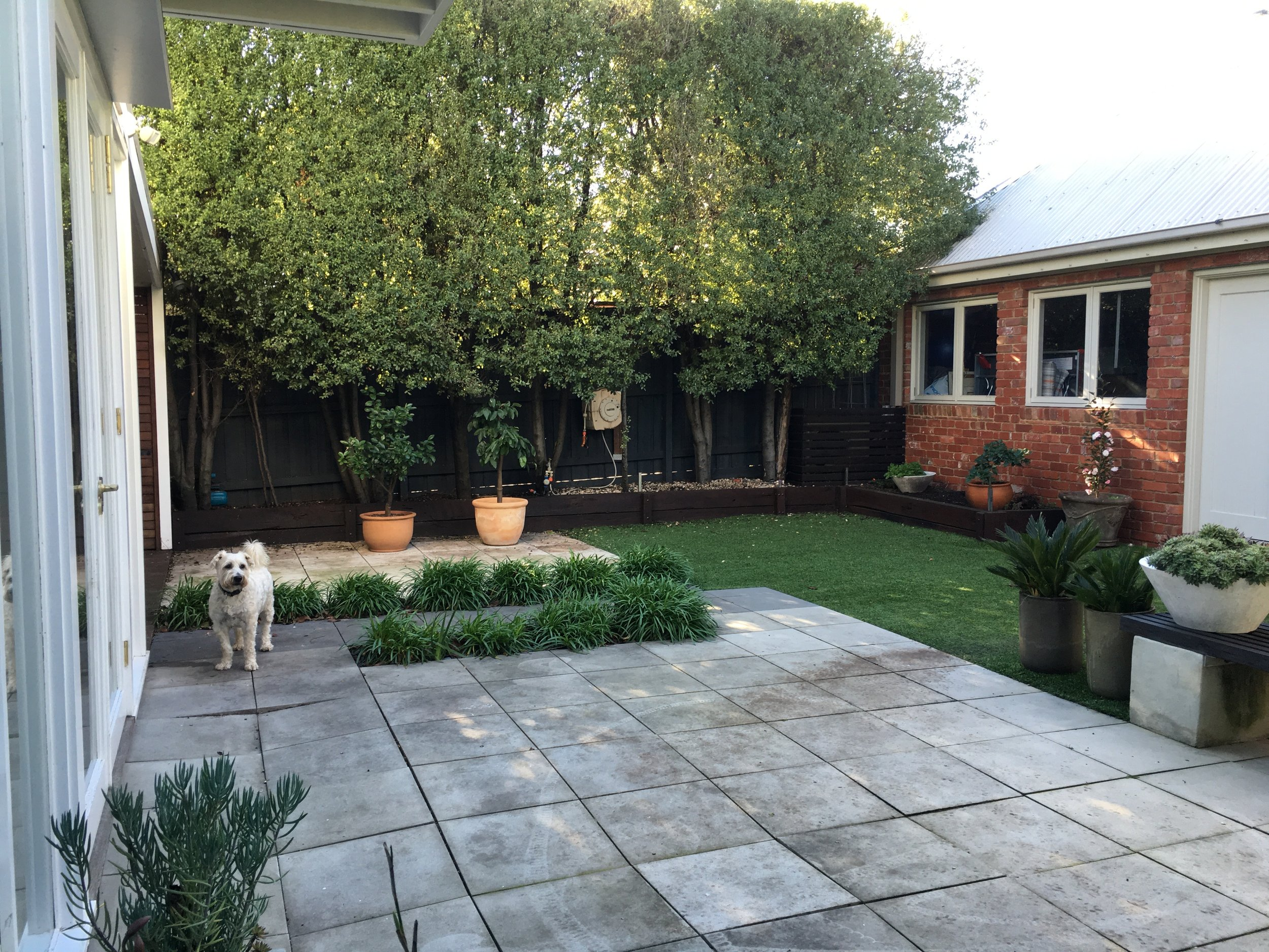 Before: A pretty tired space with shabby paving that had dropped over time - there was nowhere to relax and the space emend small and uninviting.