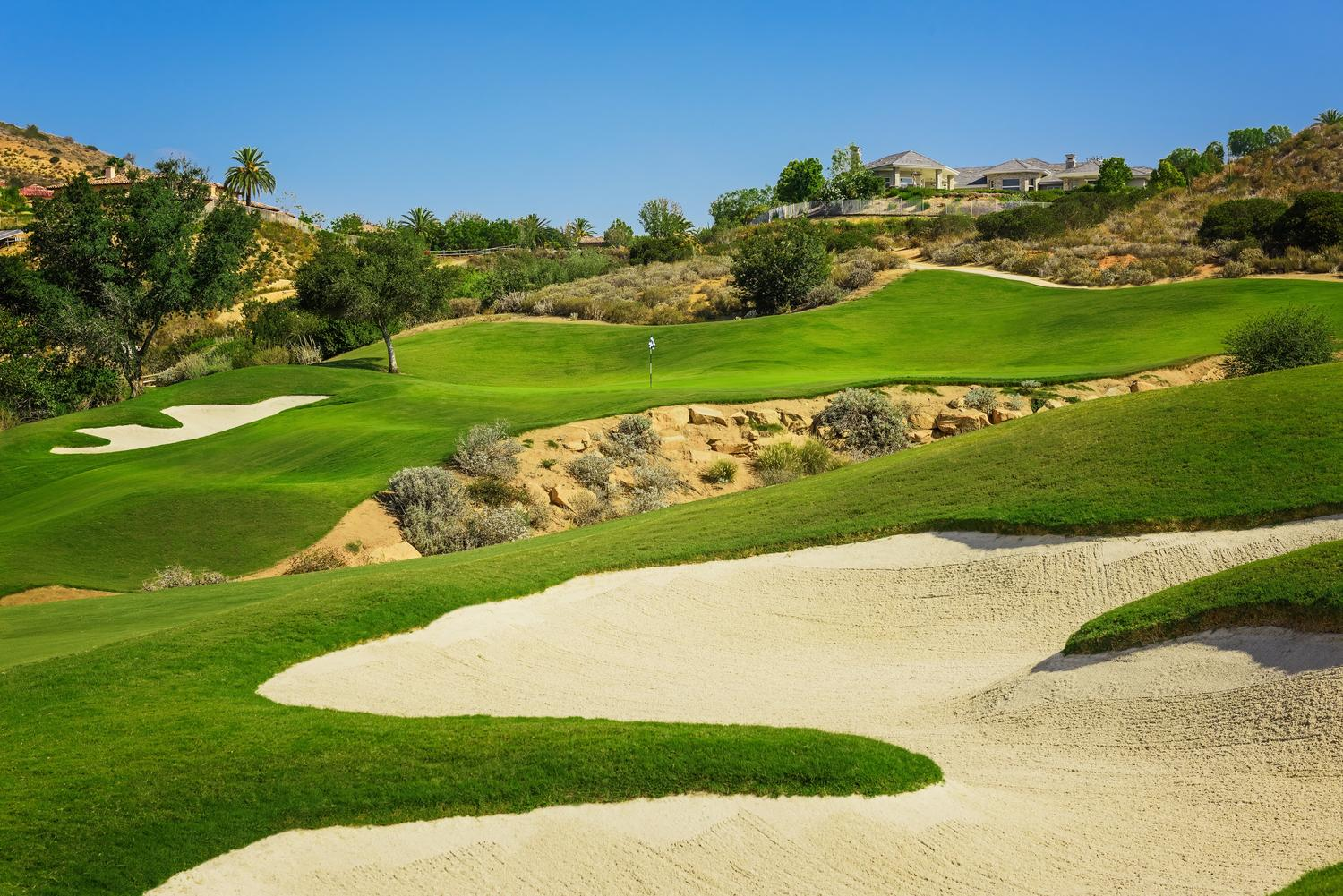 Golf Picture 2 resize.jpg