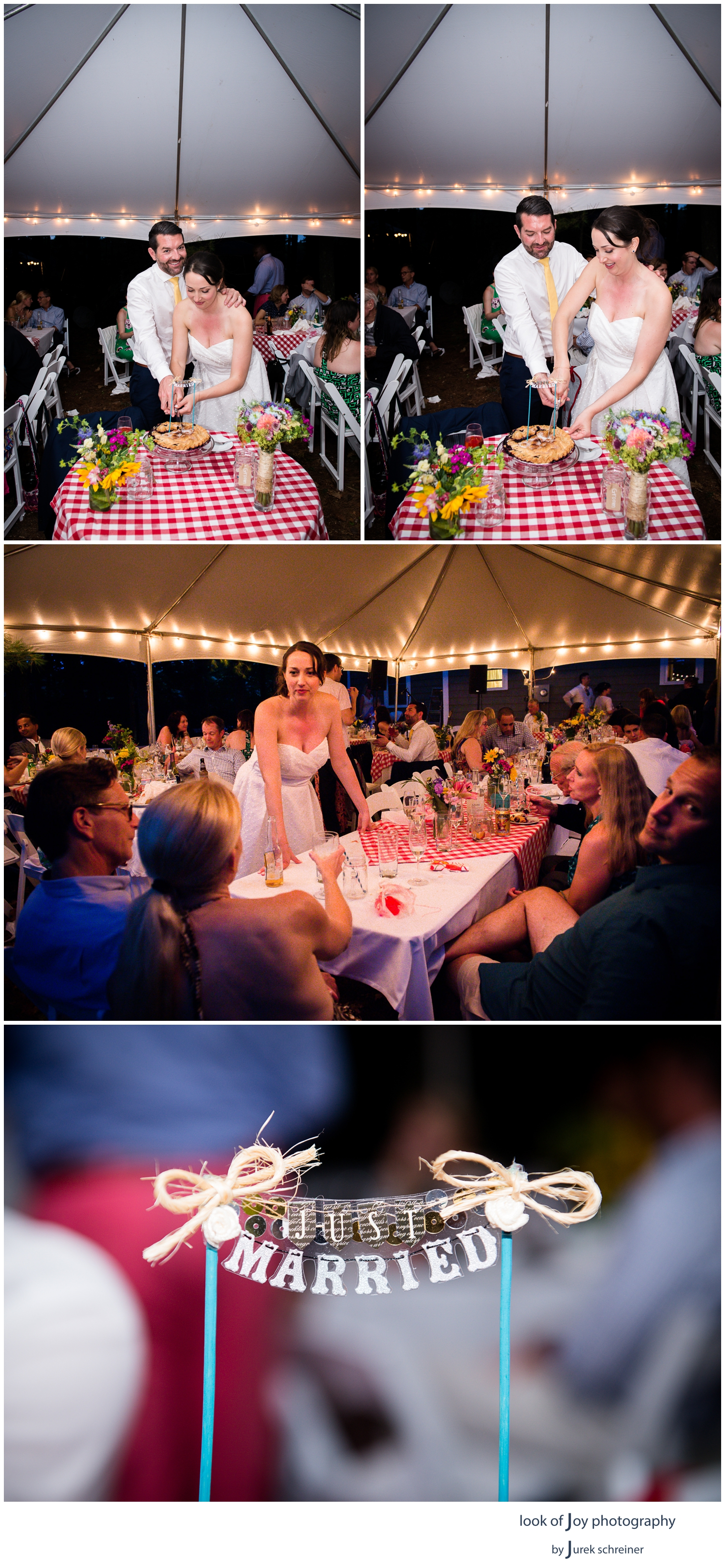 Rustic_Island_Wedding_New_Hampshire11.jpg