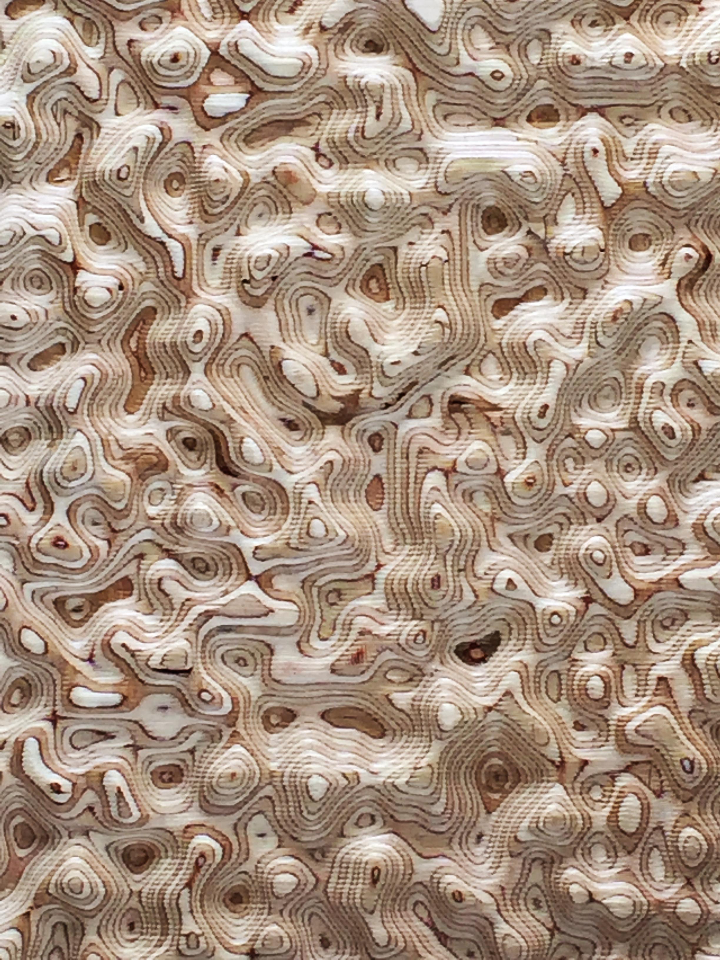 White Noise Detail.jpg