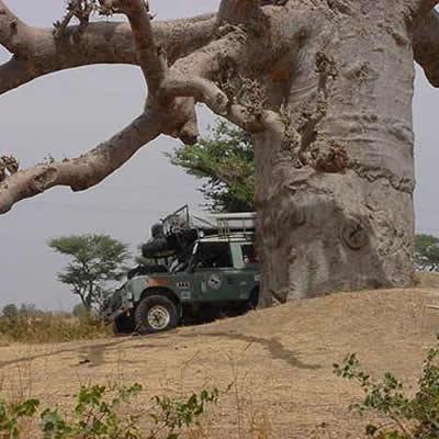 February 27, 2001 Eastern Senegal - Travels through Eastern Senegal.