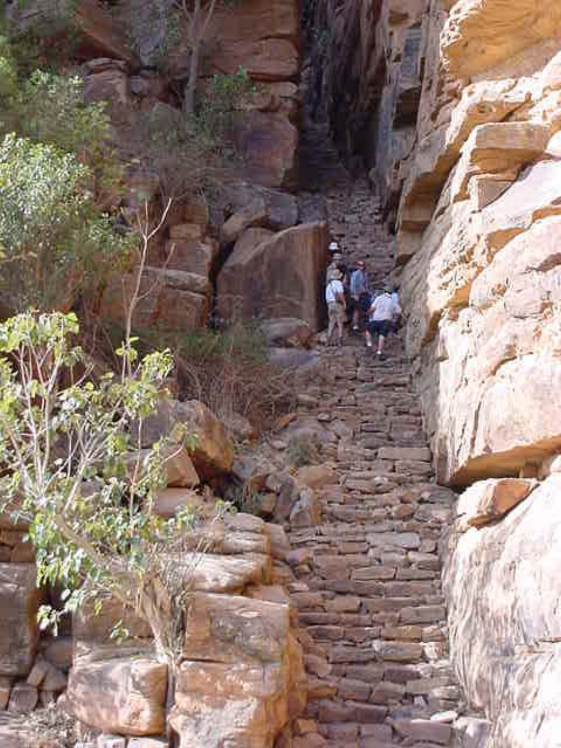 Stairs are a way of life in the Dogon Village