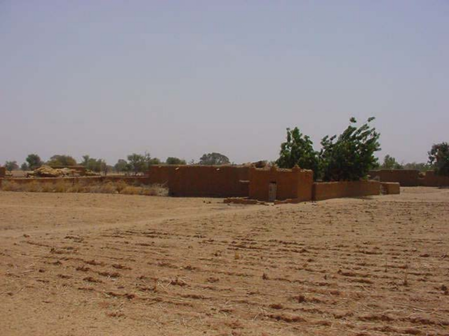 The dry fields of the Dogon Valley