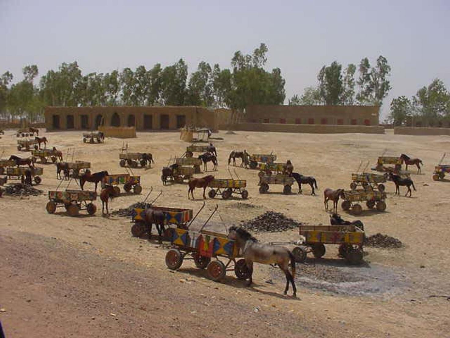 Carts await pick up of market items