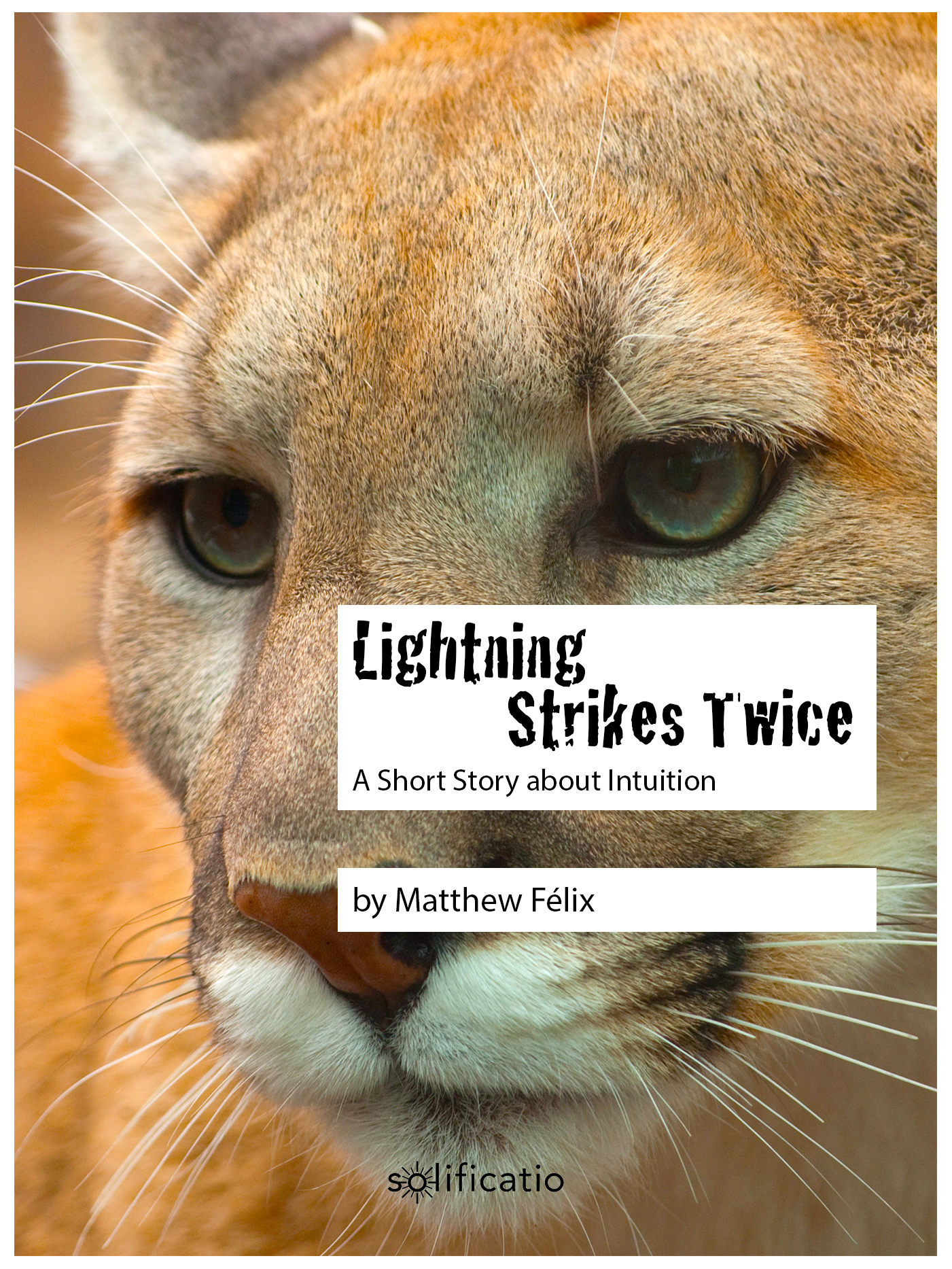 "He thought he was just taking a hike on the Northern California coast. Instead he found himself face-to-face with one of his biggest fears, thanks to an intimate experience with his inner voice. ""Lightning Strikes Twice"" is the free true story by author Matthew Felix."