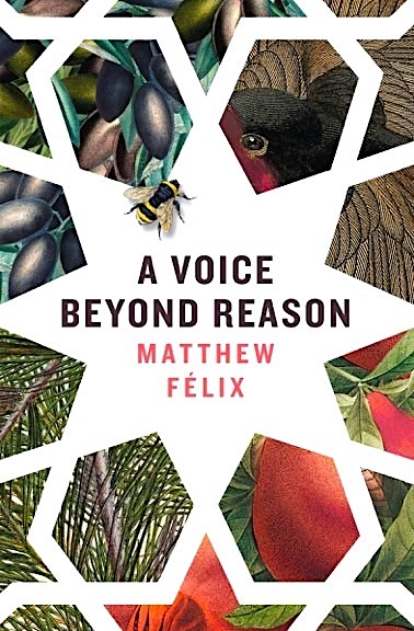 A Voice Beyond Reason