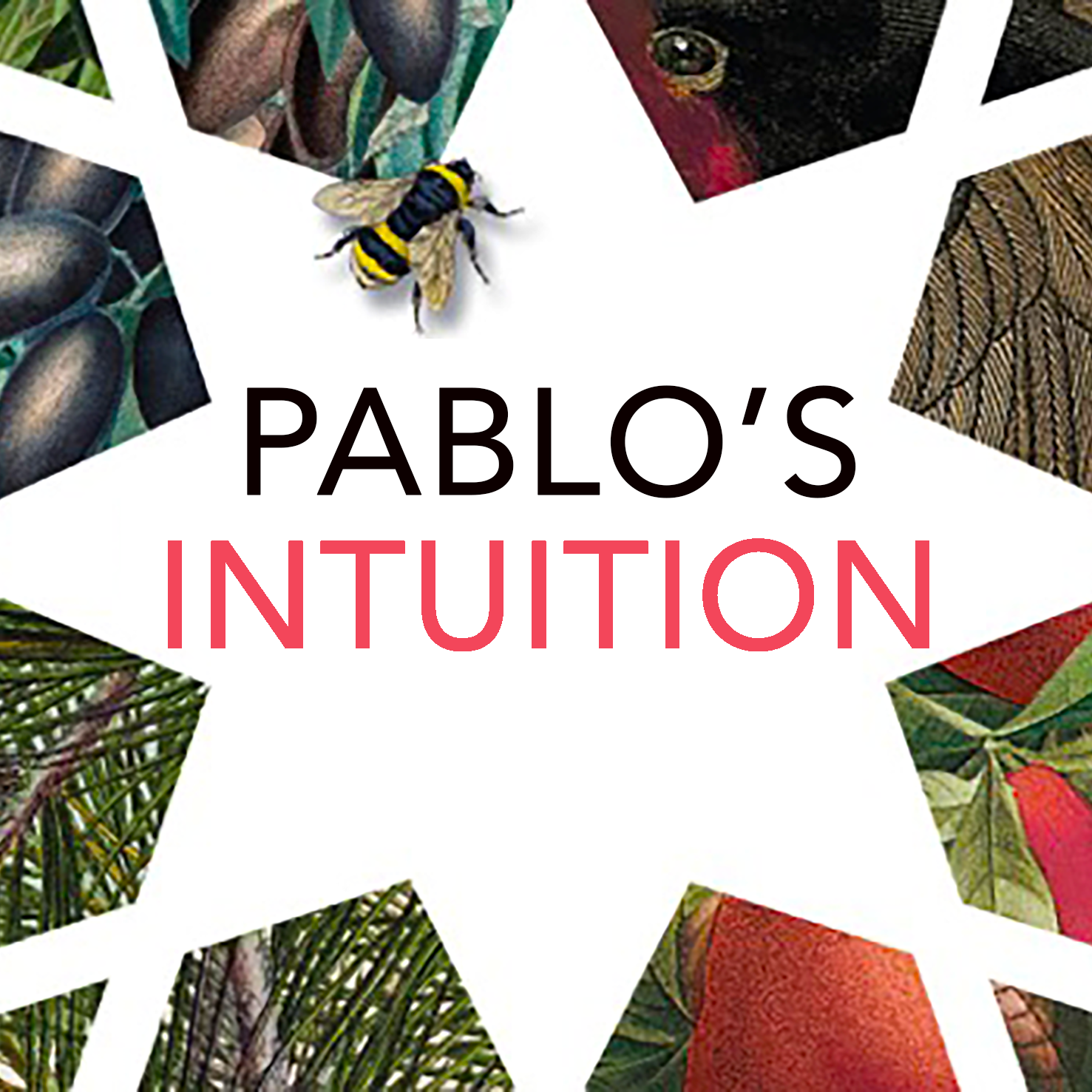 Pablo's Intuition podcast logo