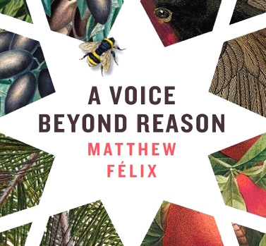 """Author Matthew Felix's"" novel, ""A Voice Beyond Reason,"" ncluded in the Creative Process Exhibition, launched at the Sorbonne and traveling to forty leading universities around the world. An excerpt from the novel deemed particularly evocative of a sense of place was chose for the exhibition.."