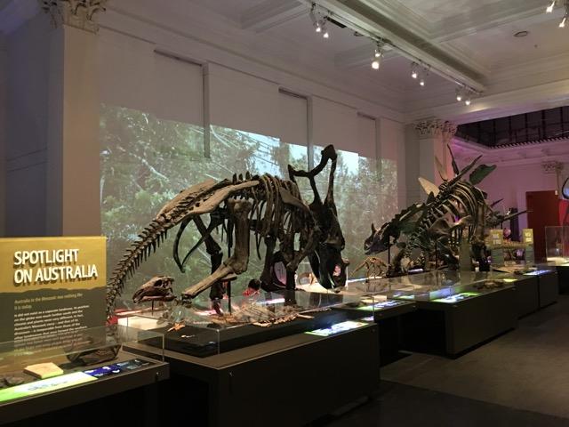 australianmuseum05.jpg