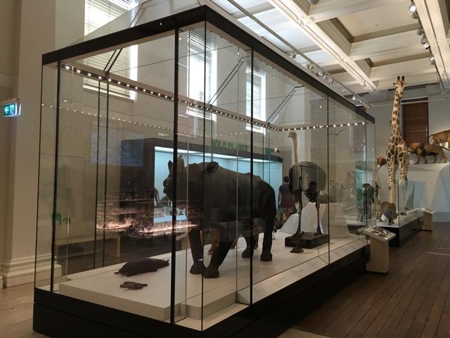 australianmuseum08.jpg
