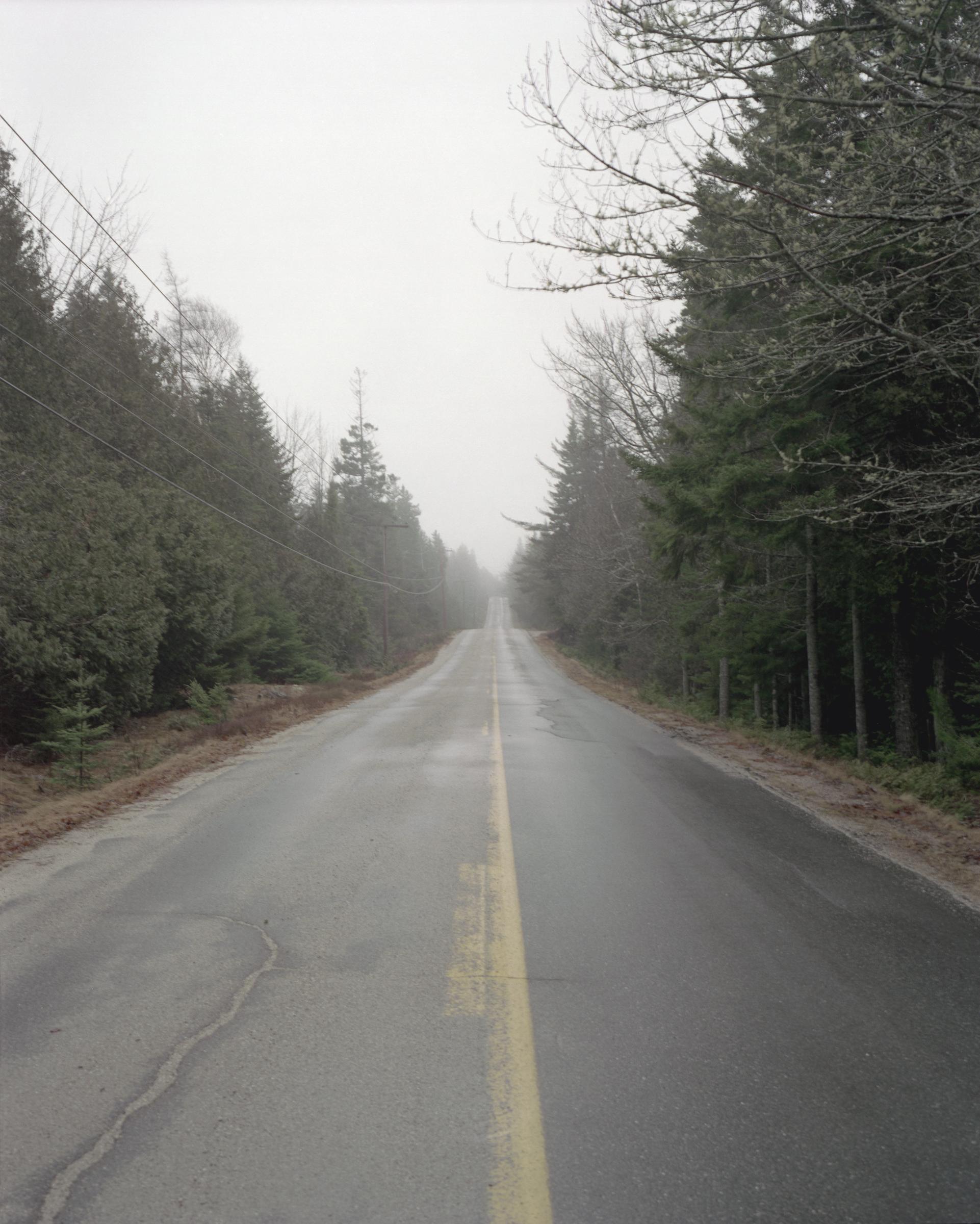 Schoodic Road.jpg