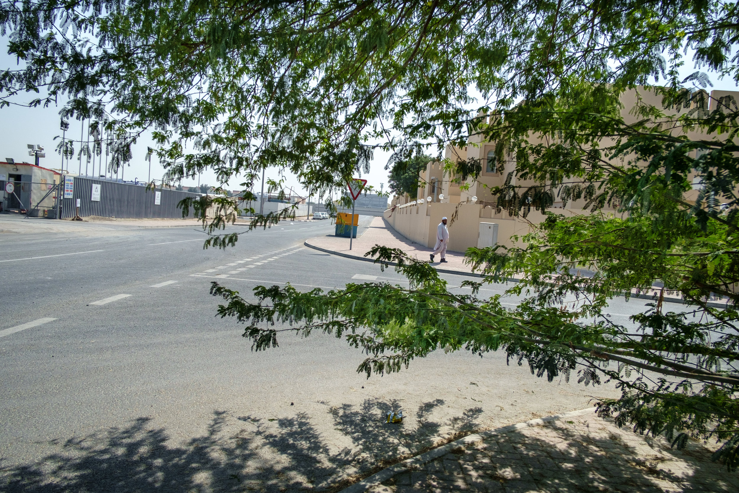 A man is framed by branches of a tree on the streets of the Al Waab district of Doha.