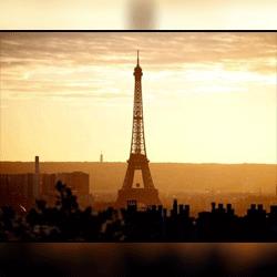 Paris OECD Expert Meeting   2 November 2016, Paris, France