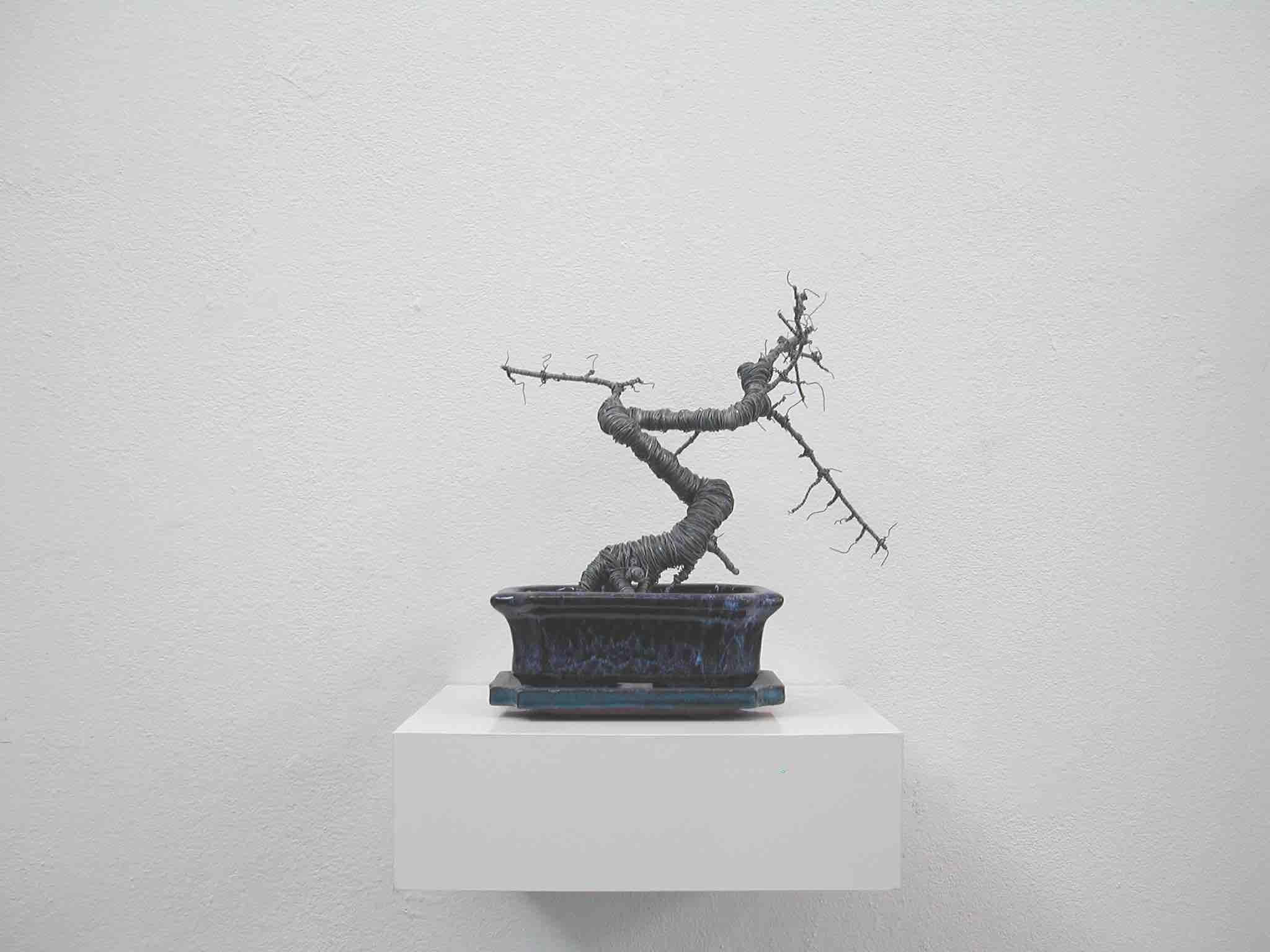 Andreas Kaiser, Draht, Bonsai,2009, mixed media, 30x25x25cm, courtesy Galerie Seippel Köln.jpg