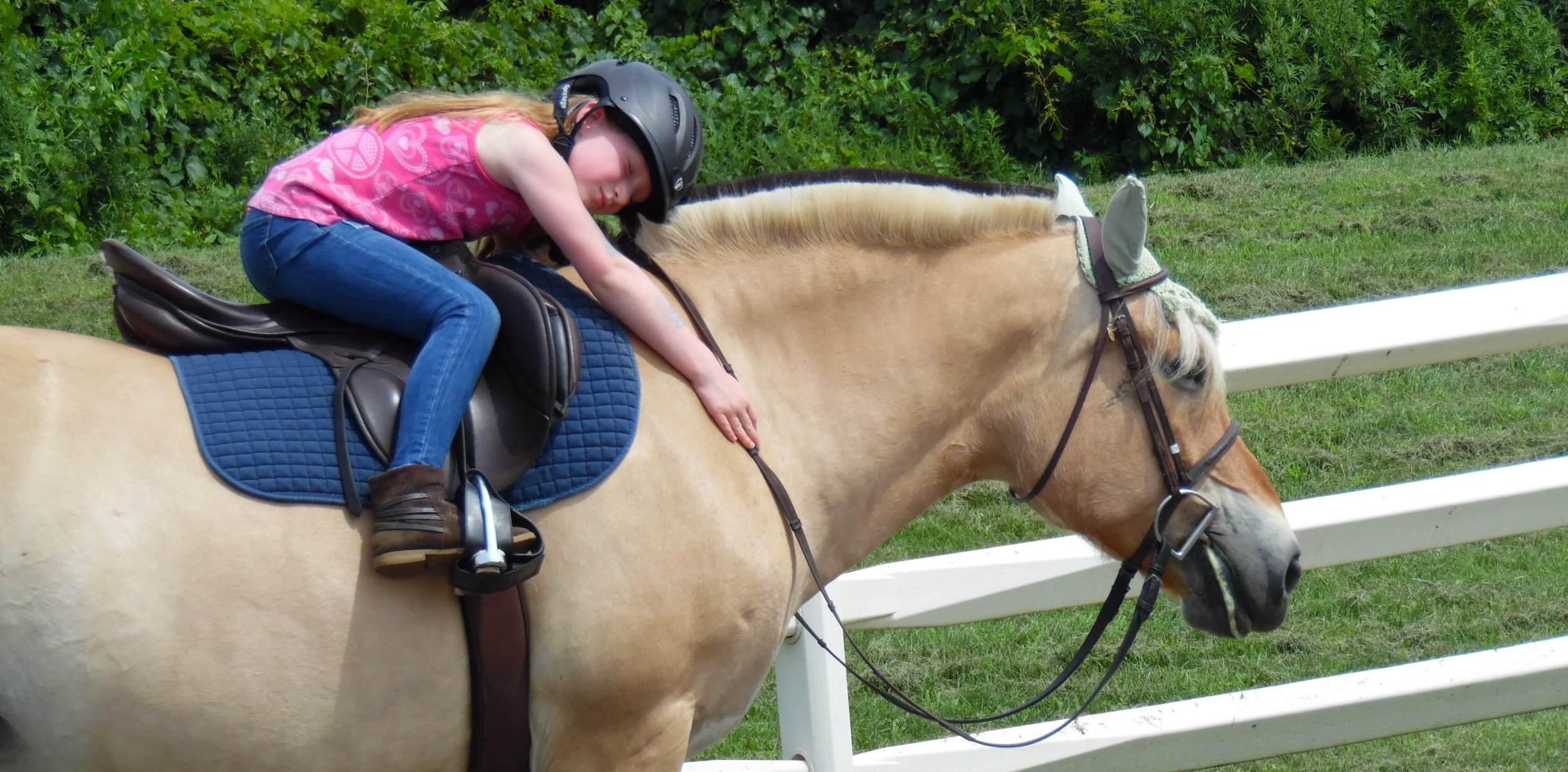 We're sure your child will make connnections with our horses just like this.