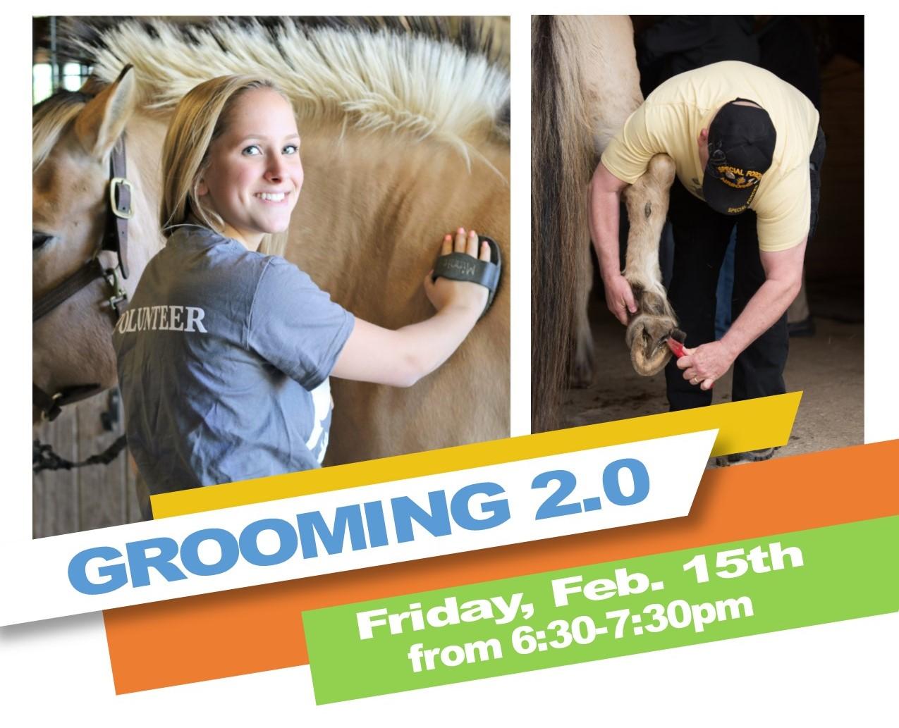 Grooming-IMAGE.jpg