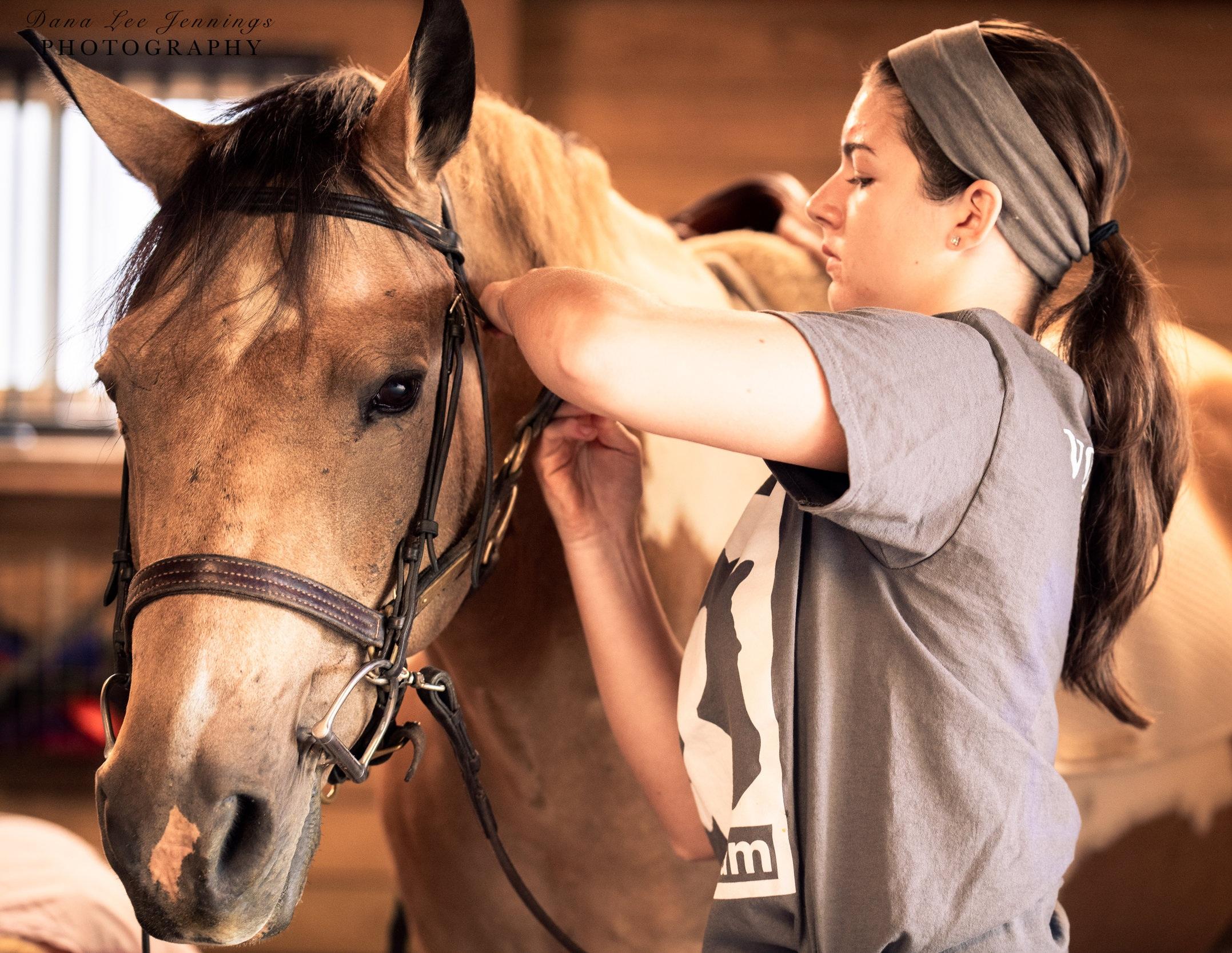 head+shots+and+horses-7275.jpg