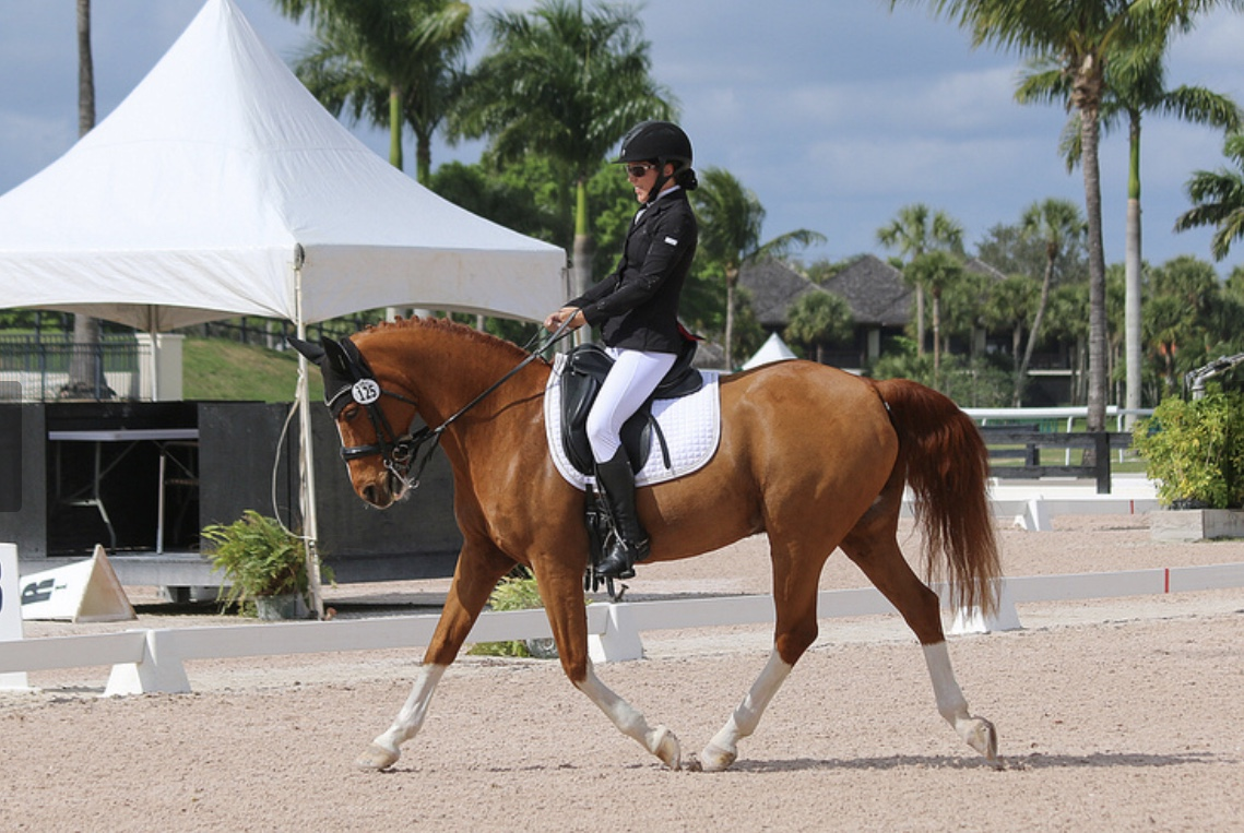 Alana Flax-Clark and with her Dutch Riding Pony, El Paso (Taco) at Wellington's Adequan Global Dressage Festival. Photo Credit: Regina Bann
