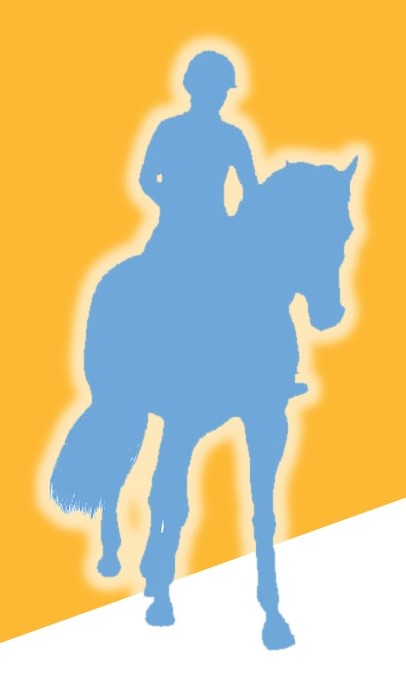Pelvic - Horse graphic.jpg