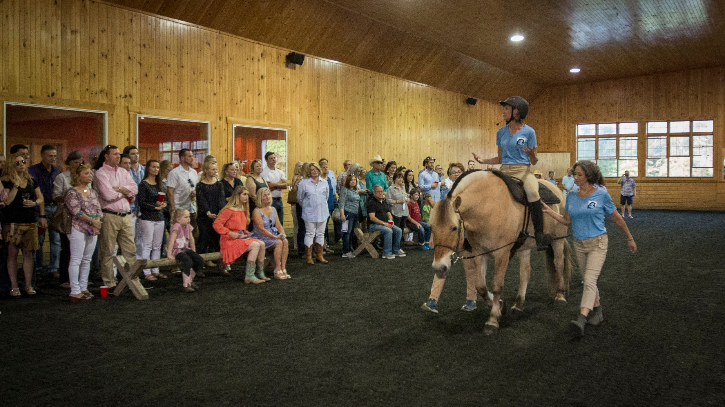 Therapy Services Demo: All of our therapists (OT, PT, SLP) specialize in utilizing equine movement as part of an integrated plan of care, but   how does the horse help someone master everyday tasks?