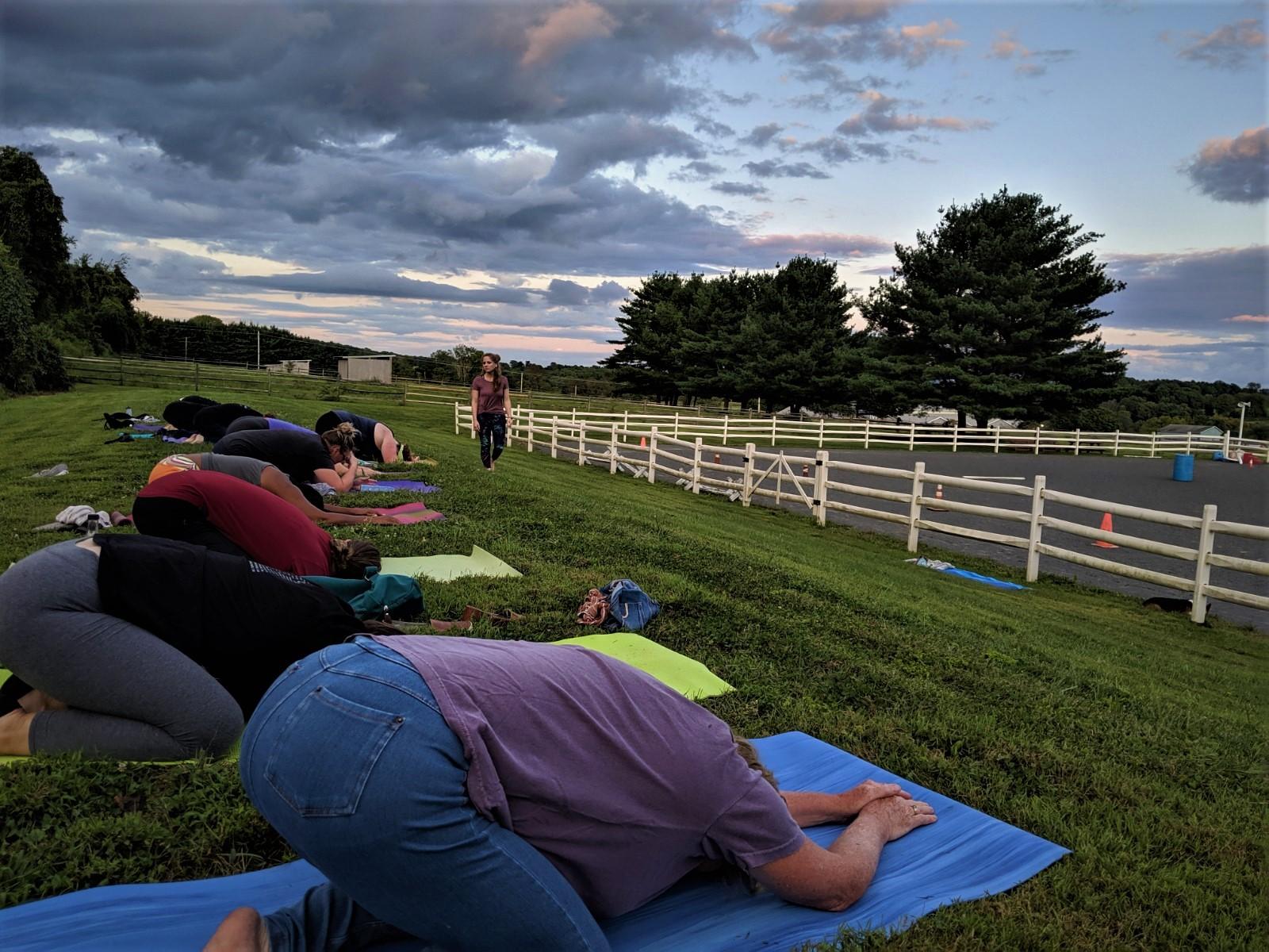 Yoga with Meg - on the hill-3.jpg