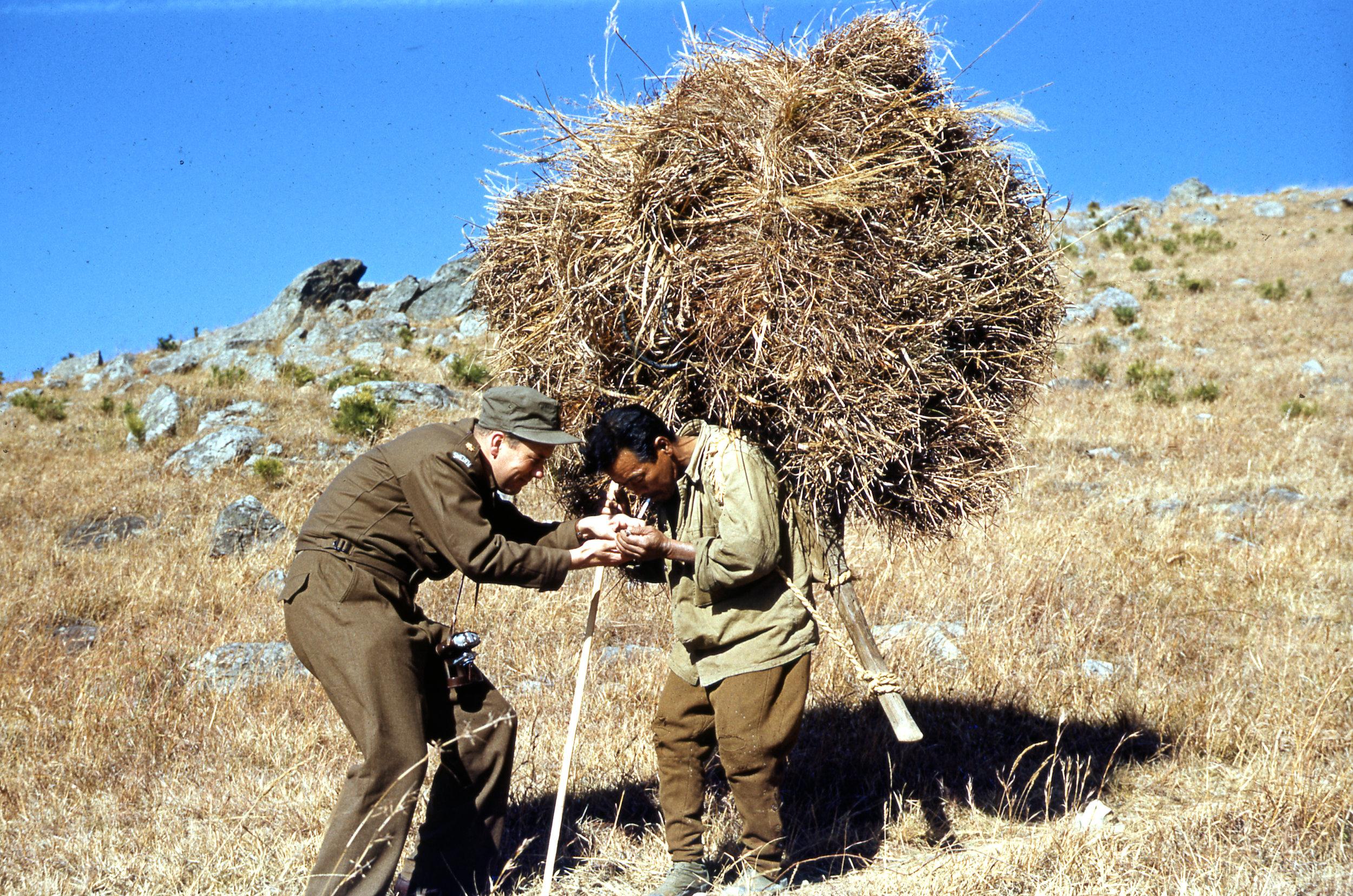 Vedsamlare på kullarna ovanför Pusan tar en paus  / Foto: Gösta Neander