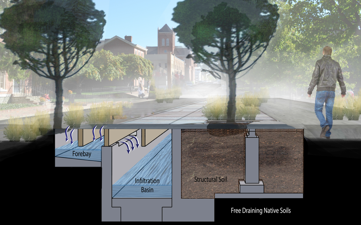 Section diagram of stormwater capture system