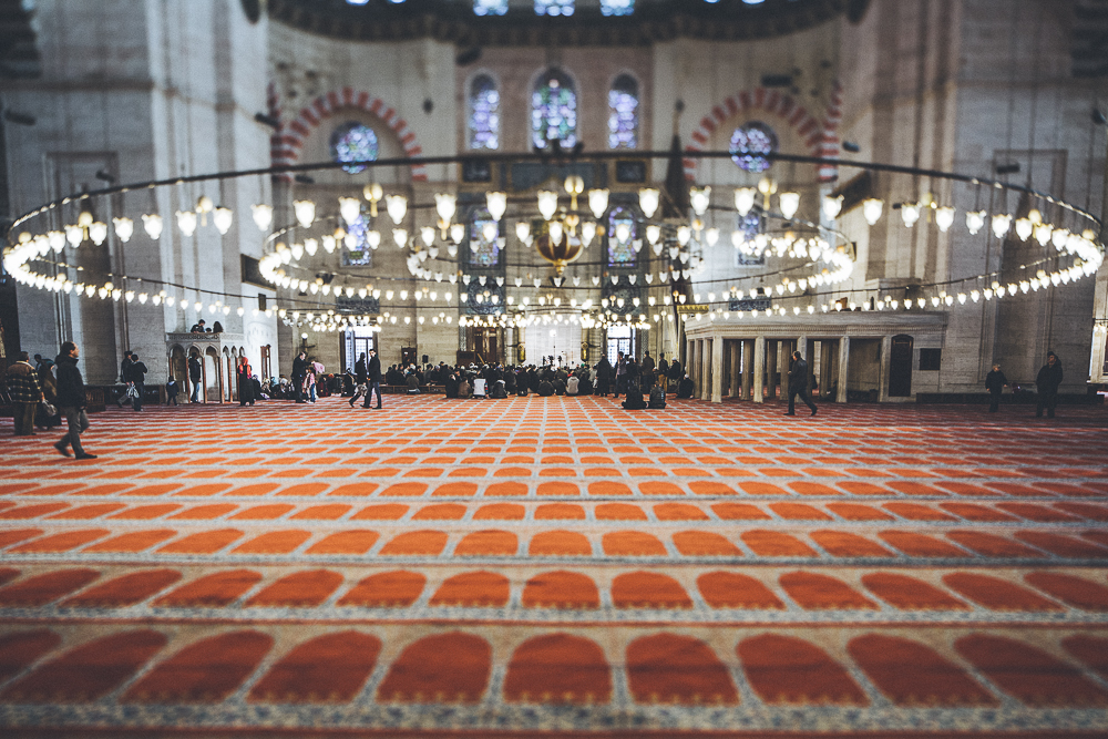 Istanbul-BD-www.celinehamelin.com-2582.jpg