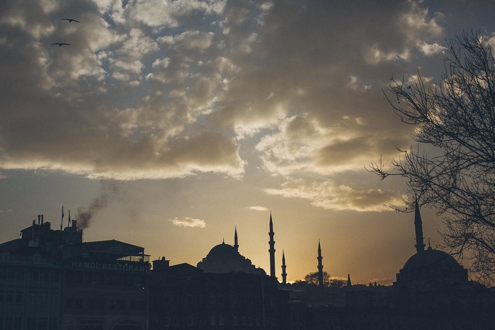 Istanbul-BD-www.celinehamelin.com-2679.jpg