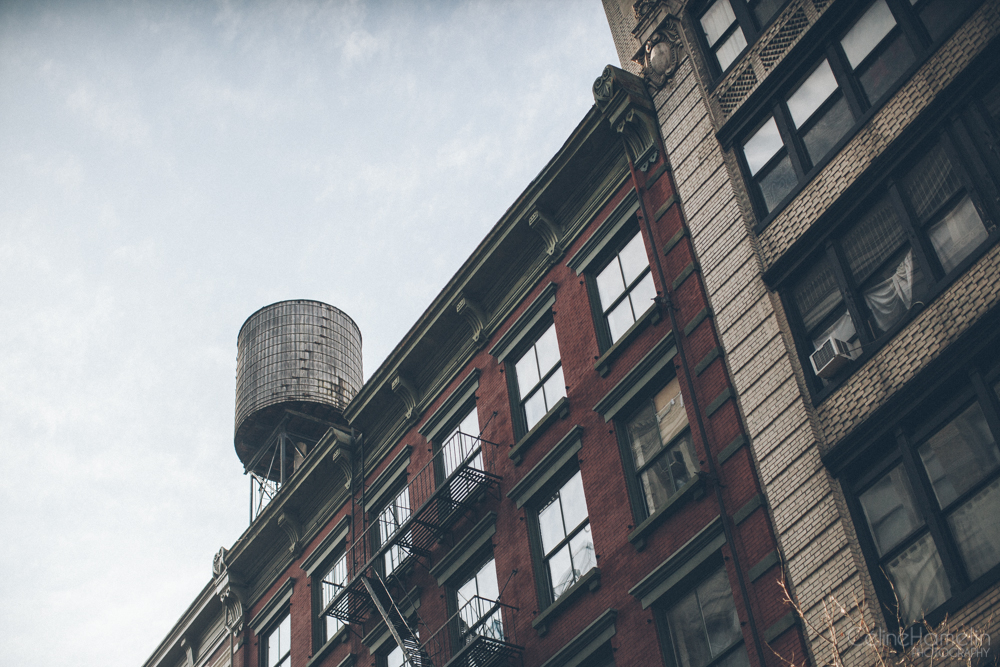 (13-12-01) Soho Harlem-8724.jpg