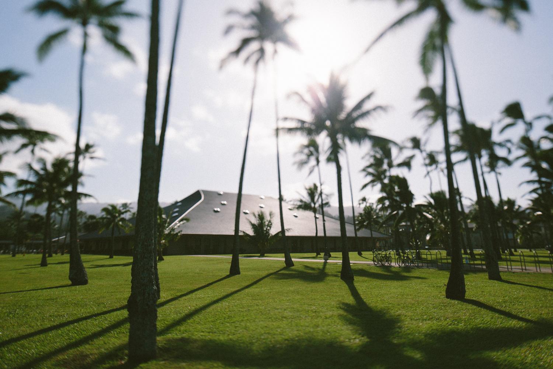 1-oahu-Hawaii2014-10A0296.jpg