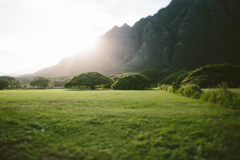 1-oahu-Hawaii2014-10A0394.jpg