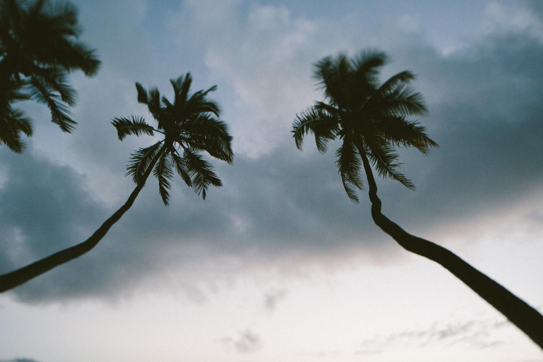 2-maui-Hawaii2014-10ED15382-maui-.jpg
