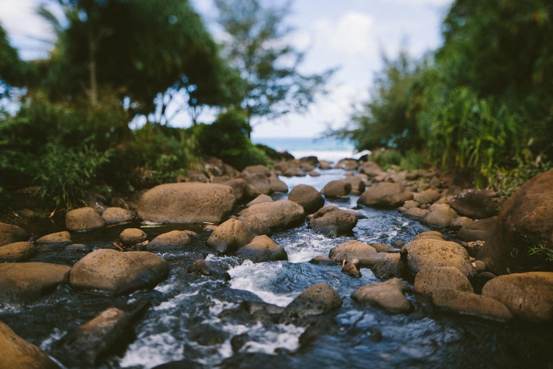 3-kauaiHawaii2014-10ED0023.jpg