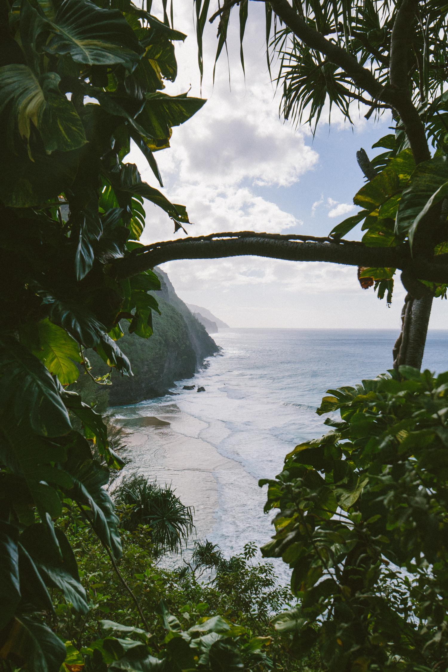 3-kauaiHawaii2014-10ED0103.jpg