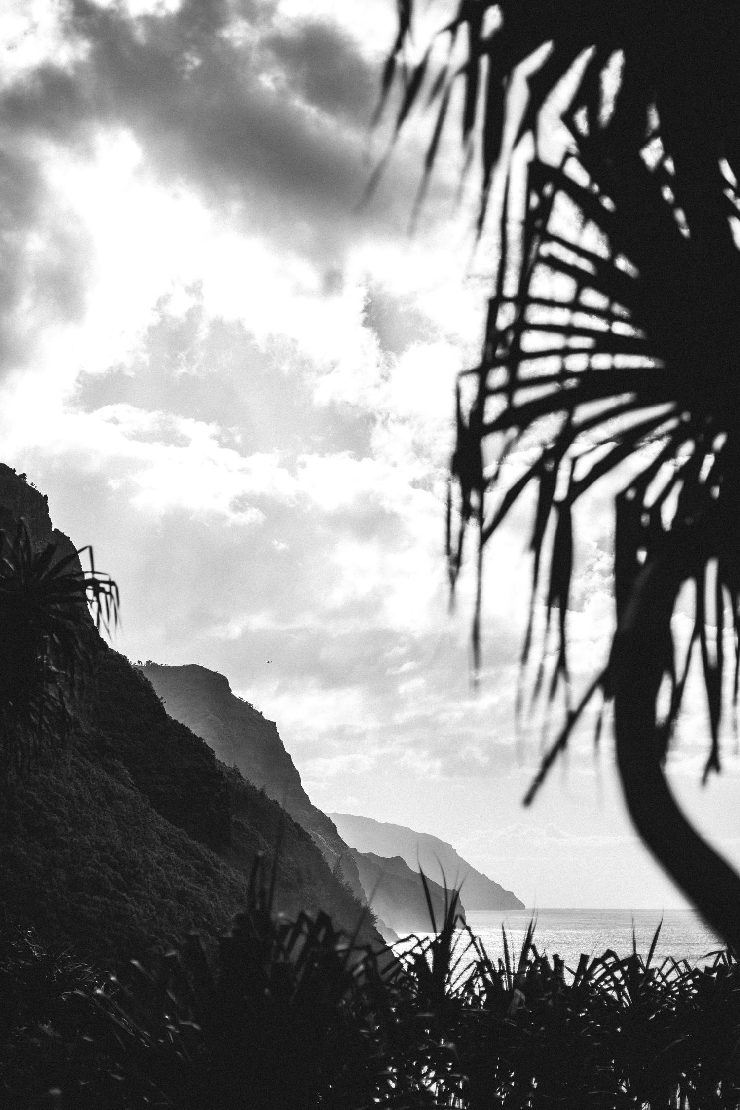 3-kauaiHawaii2014-10ED0119.jpg