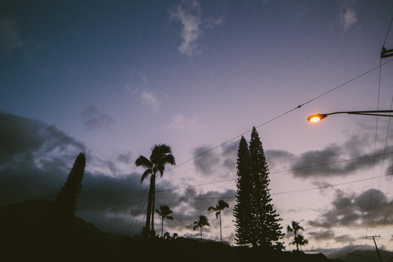 3-kauaiHawaii2014-10ED0233.jpg