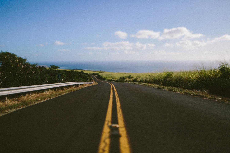 3-kauaiHawaii2014-10ED0422.jpg