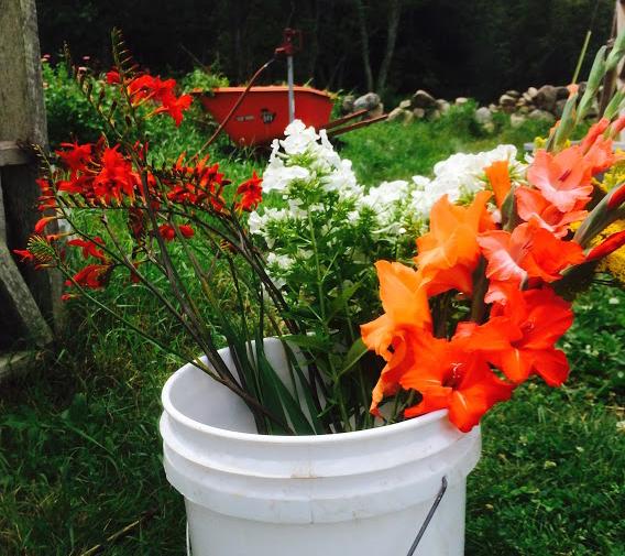 flower-bucket.jpg