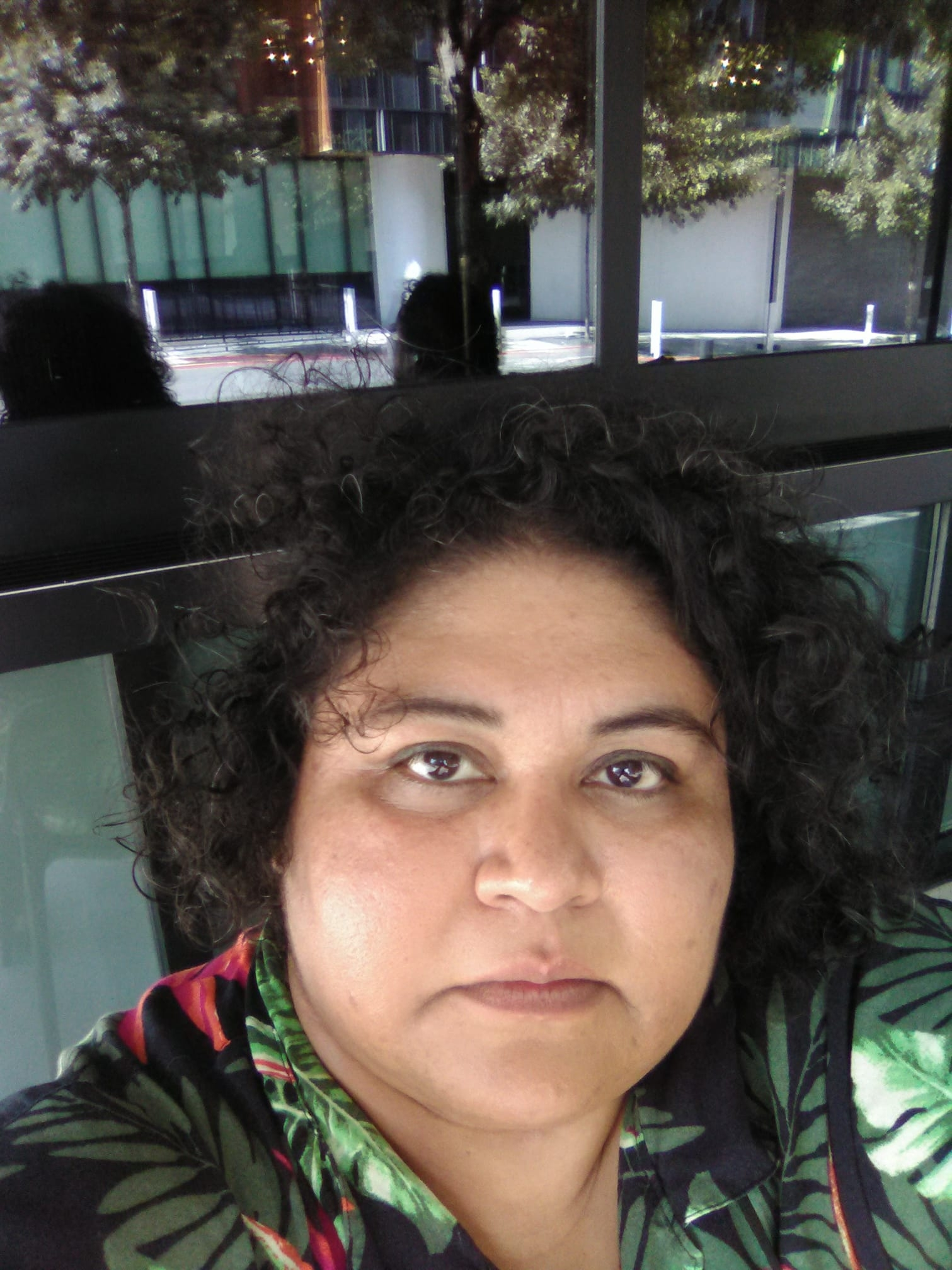 - ire'ne lara silva is the author of two poetry collections, furia (Mouthfeel Press, 2010) and Blood Sugar Canto (Saddle Road Press, 2016), which were both finalists for the International Latino Book Award in Poetry, an e-chapbook, Enduring Azucares, (Sibling Rivalry Press, 2015), as well as a short story collection, flesh to bone (Aunt Lute Books, 2013) which won the Premio Aztlán. She and poet Dan Vera are also the co-editors of Imaniman: Poets Writing in the Anzaldúan Borderlands, (Aunt Lute Books, 2017), a collection of poetry and essays. ire'ne is the recipient of a 2017 NALAC Fund for the Arts Grant, the final recipient of the Alfredo Cisneros del Moral Award, the Fiction Finalist for AROHO's 2013 Gift of Freedom Award, and the 2008 recipient of the Gloria Anzaldúa Milagro Award. ire'ne is currently working on her first novel, Naci. Her latest collection of poetry, CUICACALLI/House of Song, will be published by Saddle Road in April 2019. Website: irenelarasilva.wordpress.com