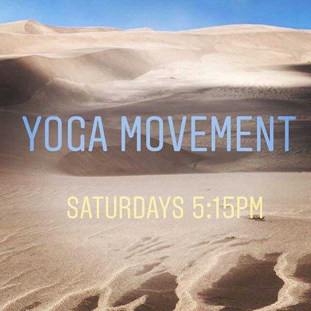 I'm delighted to share that I'll be teaching a new weekly class starting Sept 21st @littleyogastudio. We will explore pathways and connections in the body through some juicy flows designed to spark a feeling of being vibrantly alive. Come check it out. #yogamovement #somaticexploration #vibrantlyalive