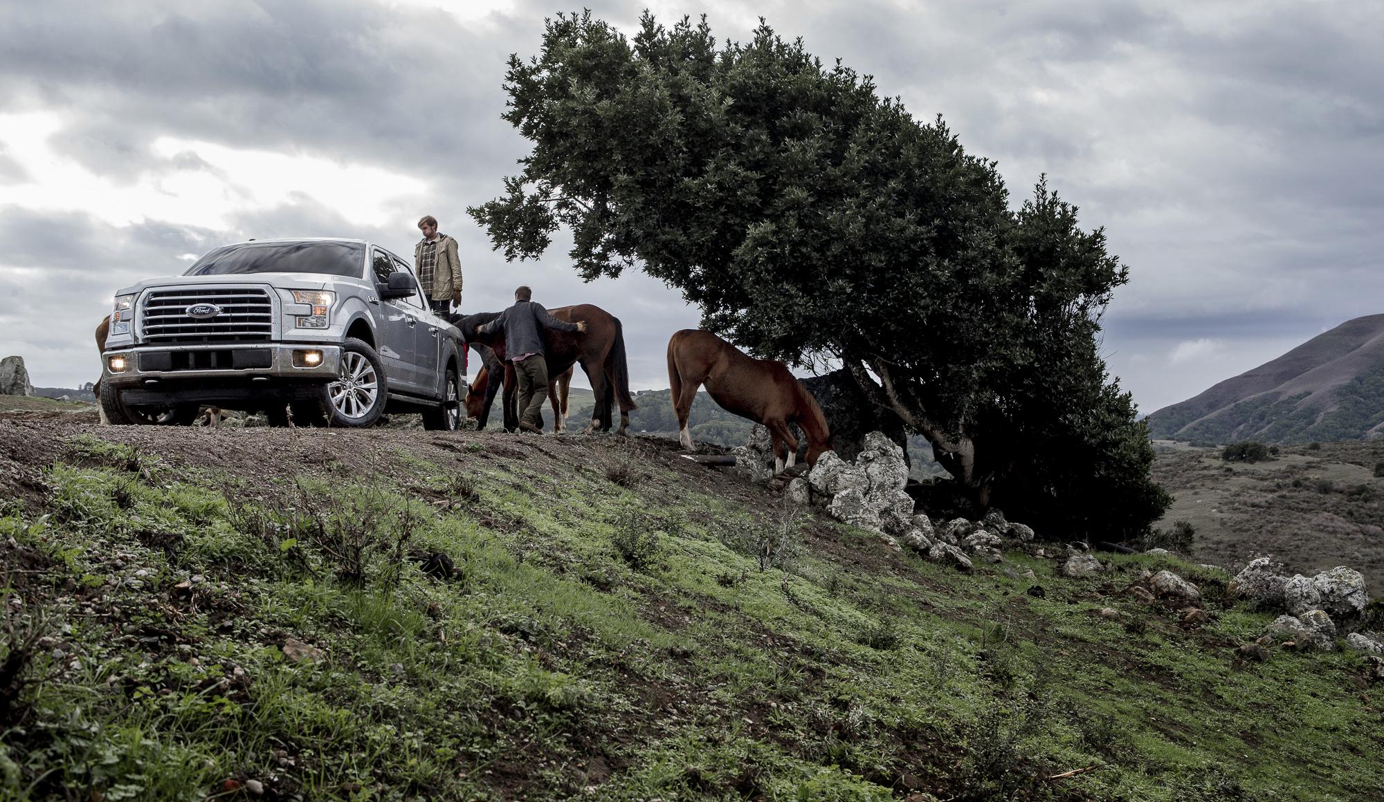 F150_XLT_Danehill_Ranch_Horse_Feeding_0629.jpg