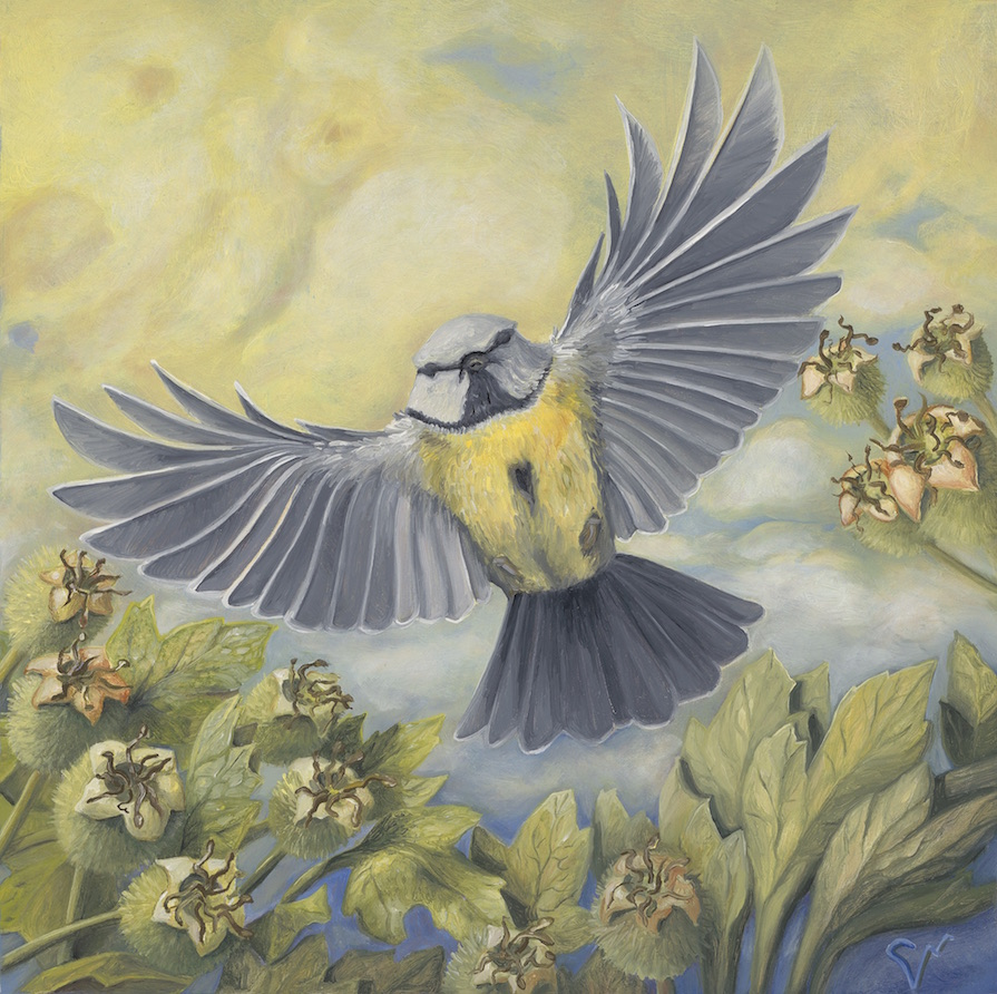 """Citrinitas: To Yellow the Wings, Await the Swelling Haws (3/4),  oil on panel, 2018 (6x6"""") SOLD"""