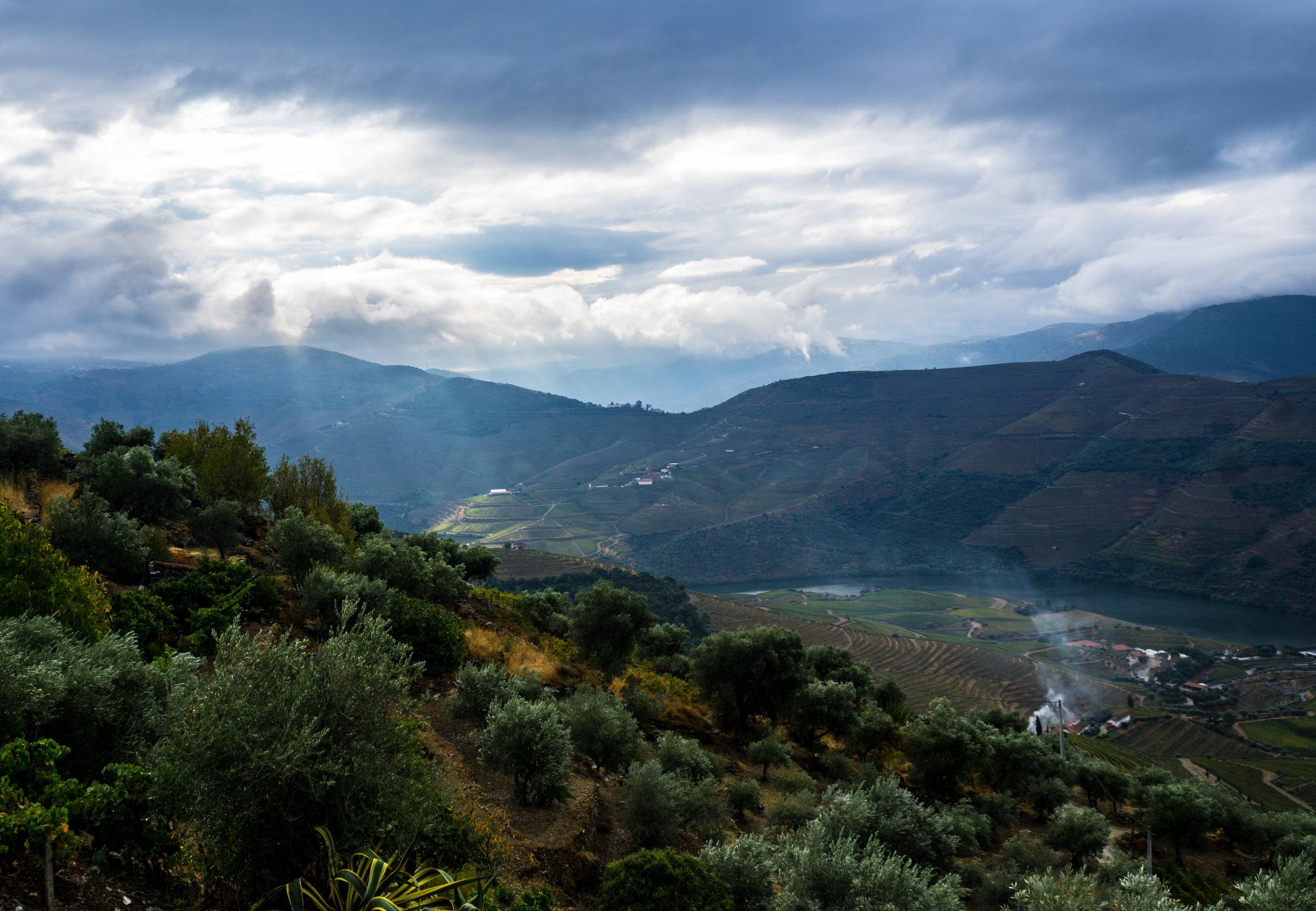Douro Valley, 2016