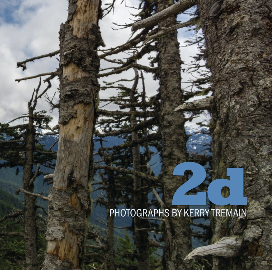 PHOTOGRAPHS IN PORTUGAL, SPAIN, SENEGAL, NEW YORK, AND ON THE OLYMPIC PENINSULA. AVAILABLE FROM BLURB FOR $85:  CLICK HERE .