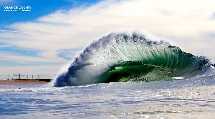 18-sardelis-seal-beach_8855