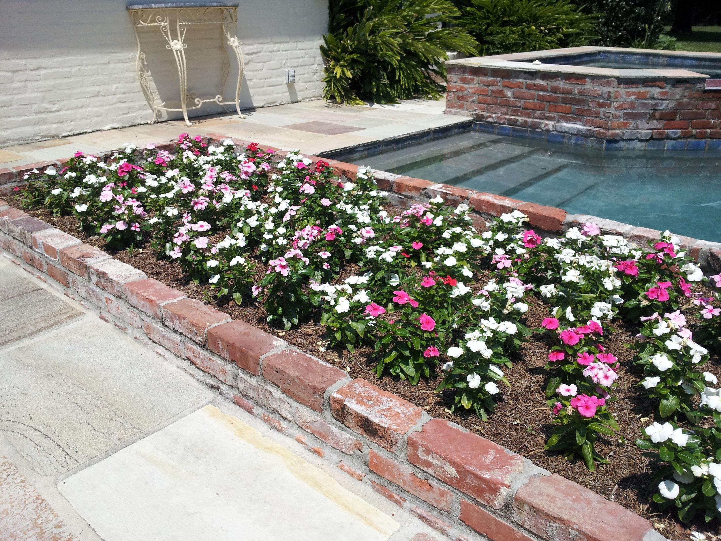 flowerbed-maintenance-seasonal-color-baton-rouge-area (4).jpg