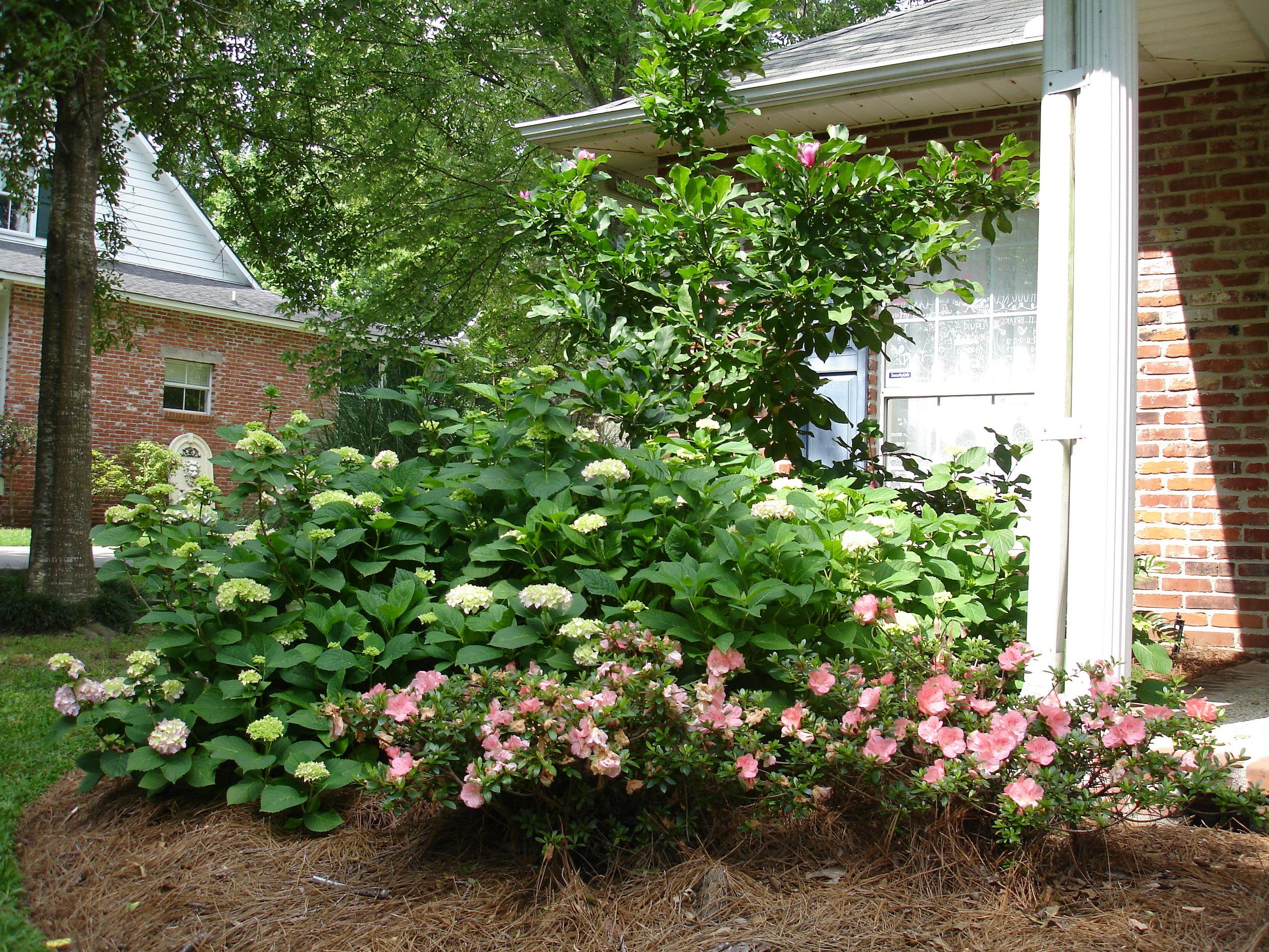 flowerbed-maintenance-seasonal-color-baton-rouge-area (14).JPG