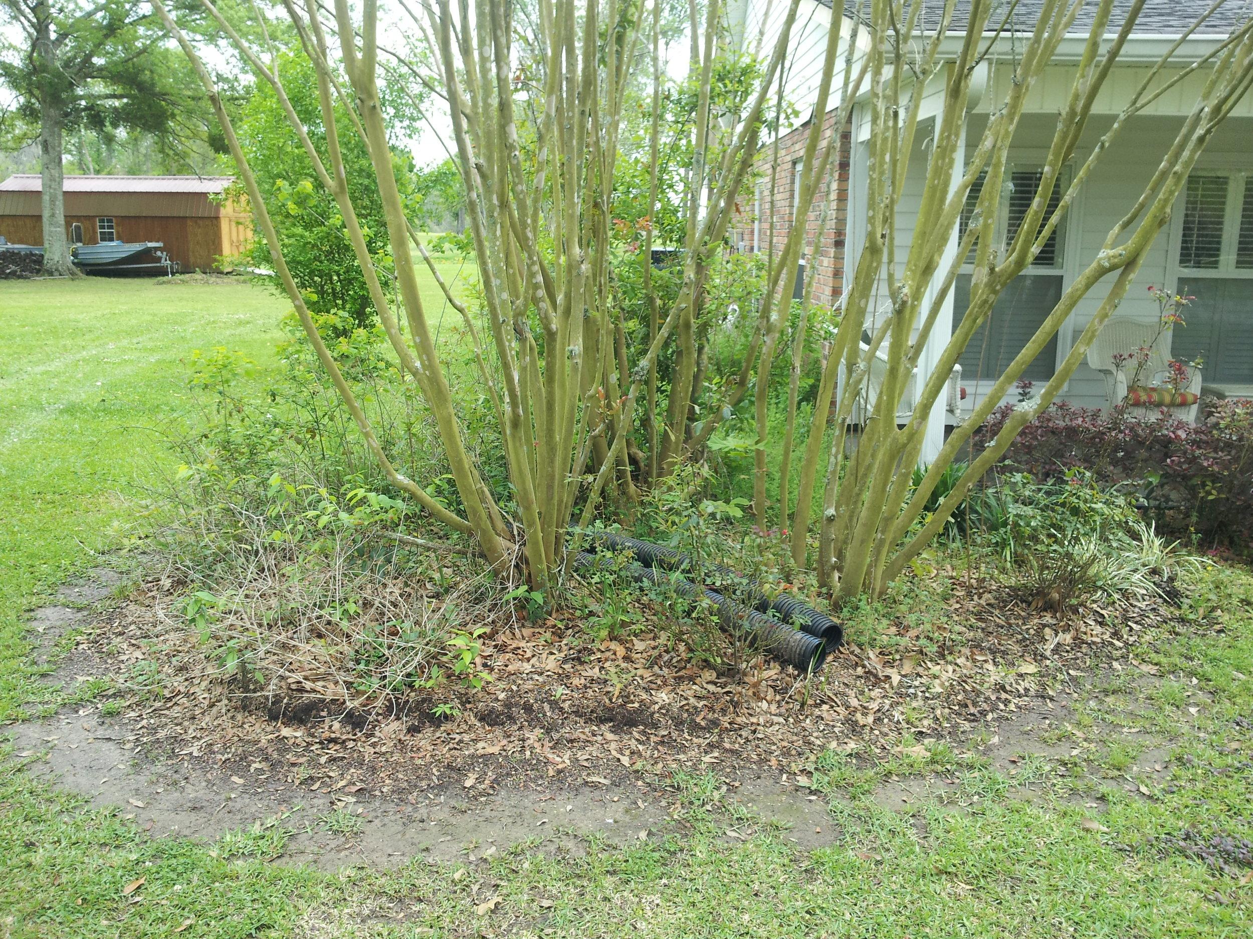 flowerbed-maintenance-baton-rouge-area (3).jpg